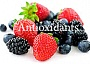 antioxidants berries