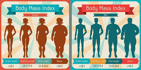 bmi for women and men