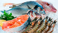 Fishy Diet For Healthy Eating