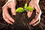 Go Green and Start Your Own Compost