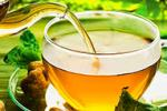 The Obese Can Lower BP With Green Tea Extract