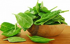 oxalate spinach